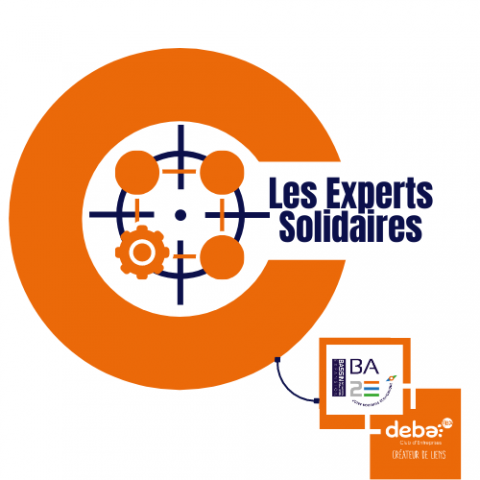 Les Experts Solidaires